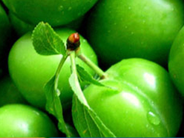 Doymaj - Garlicky fruit purée