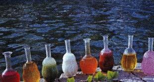 Meyvə şərbəti - Mixed fruit sherbet