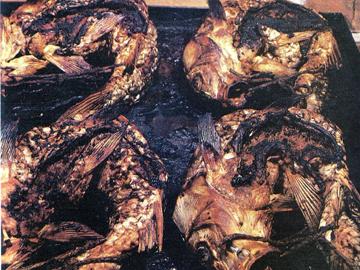 Sazan in oven a la lenkoran