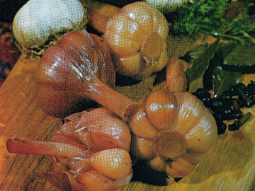 Sirkaya qoyulmush sarimsaq - Pickled garlic