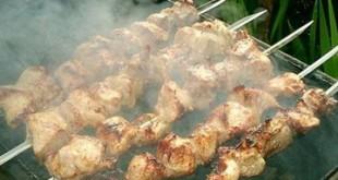 Toyug - chicken - kebab