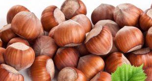 Azerbaijani hazelnuts