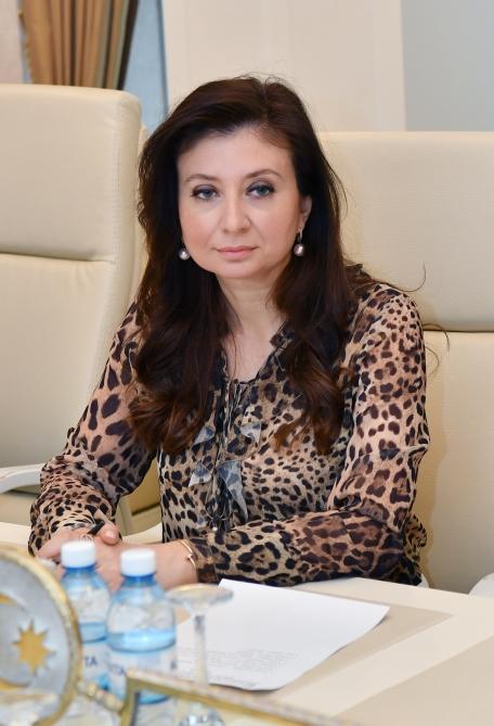 Azerbaijani MP