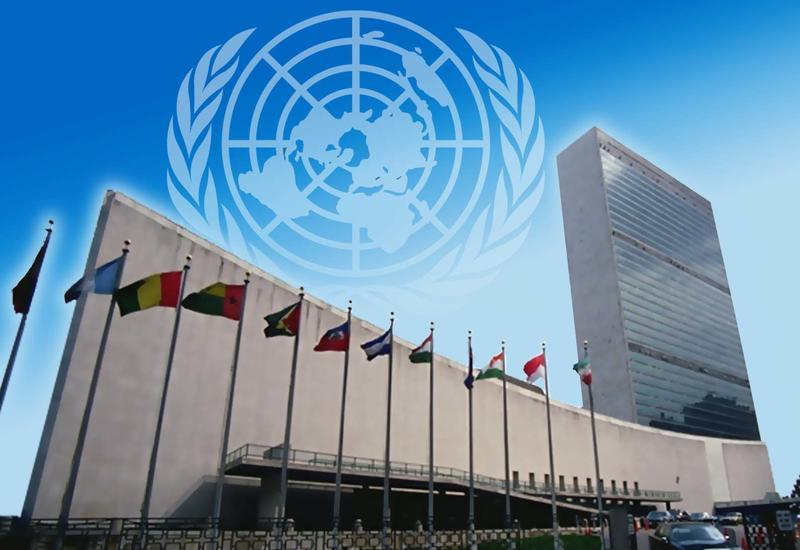 UN experts