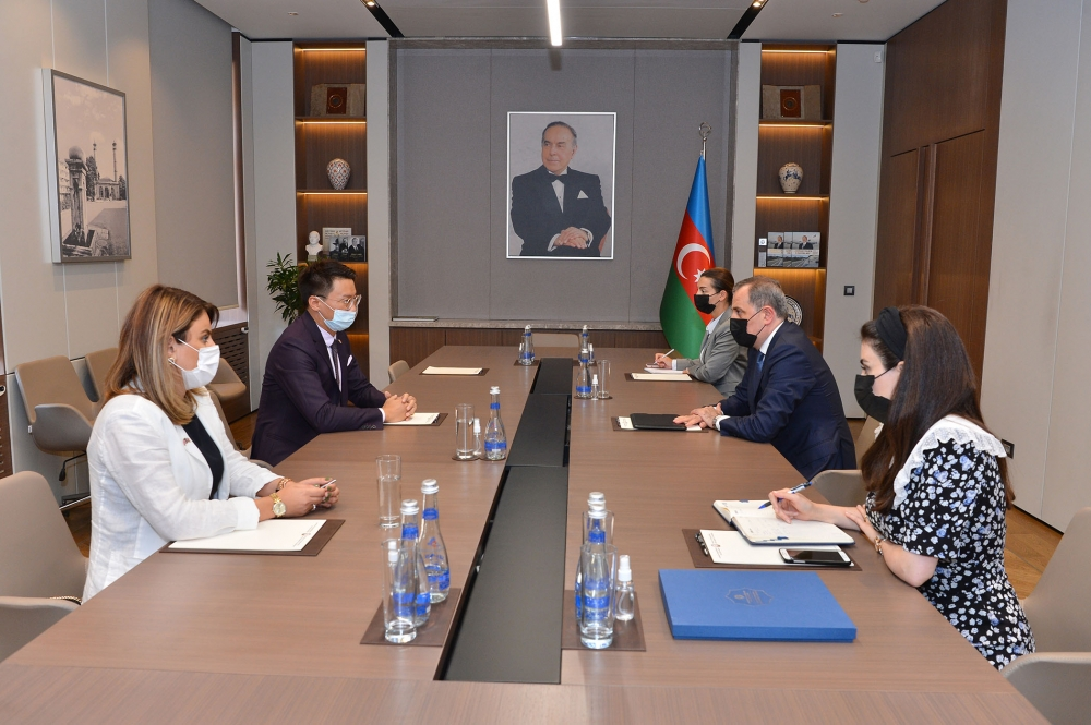 Azerbaijani FM,Head of British Council Delegation