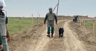 Azerbaijan looks to sign document on demining liberated territories with France